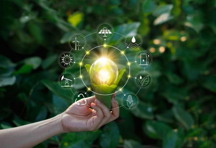 nvest in Renewable Energy Stocks