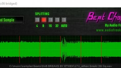 beat chopper vst screenshot