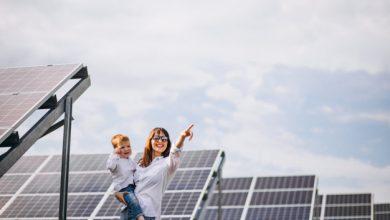 Maui solar companies