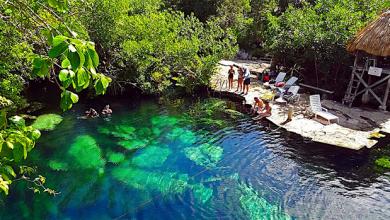 Cenotes Tour Puerto Morelos